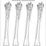 Ahg Badge Help – Gardening And Plant Science #4 | | Celery Experiment Printable Worksheet