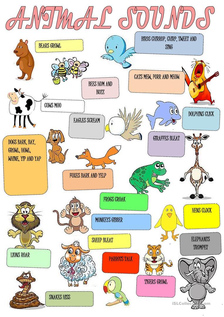 Animals Sounds Worksheet - Free Esl Printable Worksheets Made | Animal Sounds Printable Worksheets