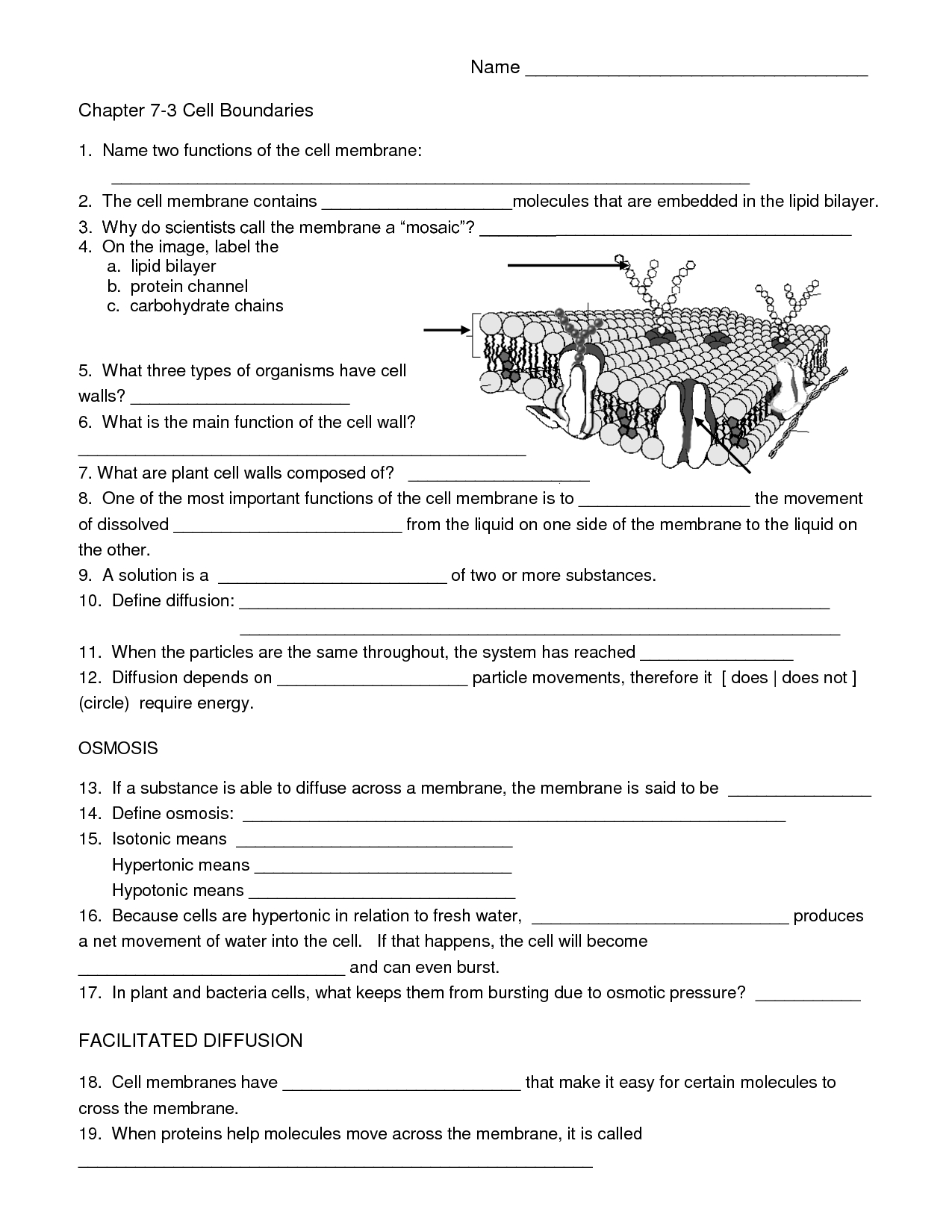 Biology Cell Worksheets | Carpe Diem Science | Science Worksheets | Free Printable High School Science Worksheets