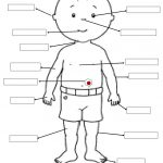 Body Parts | Edu. Activity Ideas | 1St Grade Worksheets, Teaching | Free Printable Worksheets Kindergarten Body Parts