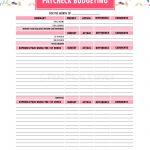 Budget Binder Printables   The Practical Saver | Printable Budget Binder Worksheets