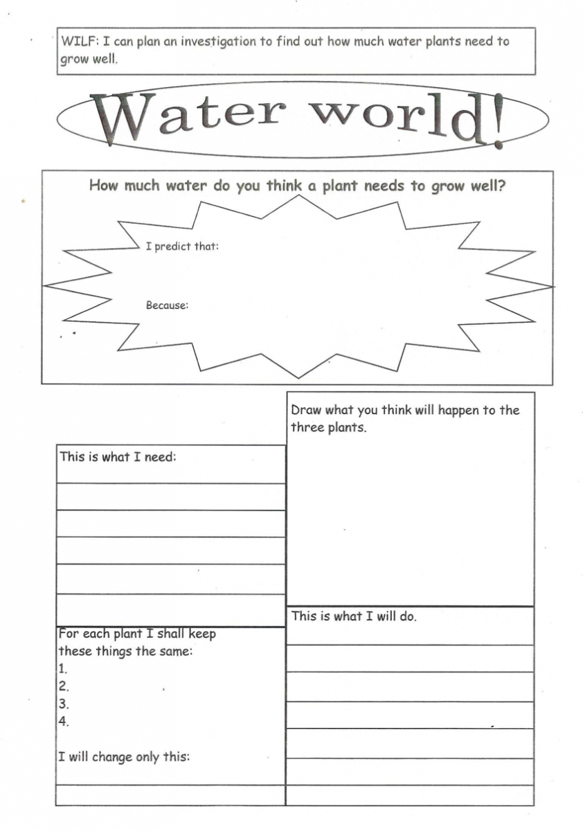 Enabling Access: Tips For Adapting Worksheets For Students With | Growing And Changing Printable Worksheets