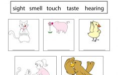 Five Senses Worksheet For Kids – Free Kindergarten Learning Worksheet | Science Worksheets For Kindergarten Free Printable