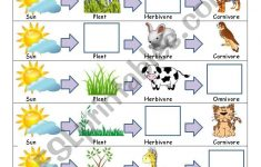 Food Chain Worksheet – Esl Worksheetslvrwolf | Food Chain Printable Worksheets