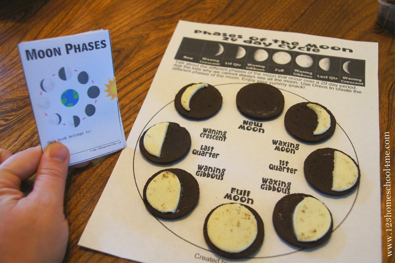 Free Moon Phases Mini-Book (Instant Download) | Phases Of The Moon Printable Worksheets