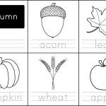 Free Printable: Autumn Words   Paging Supermom | Free Printable Leaf Worksheets