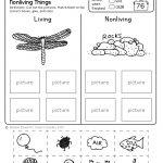 Freebie! No Prep Kindergarten Science Doodle Printables | T E A C H | Free Printable Science Worksheets