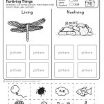 Freebie! No Prep Kindergarten Science Doodle Printables | T E A C H | Science Worksheets For Kindergarten Free Printable
