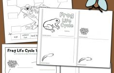Frog Life Cycle Worksheets – Mamas Learning Corner | Life Cycle Of A Frog Free Printable Worksheets