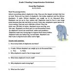 Homework Sheets Grade 3 Reading | Learning Printable | Reading | Year 3 Literacy Worksheets Printable