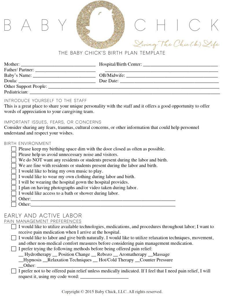 How To Create Your Perfect Birth Plan   Books   Birth Plan Sample   Birth Plan Worksheet Printable