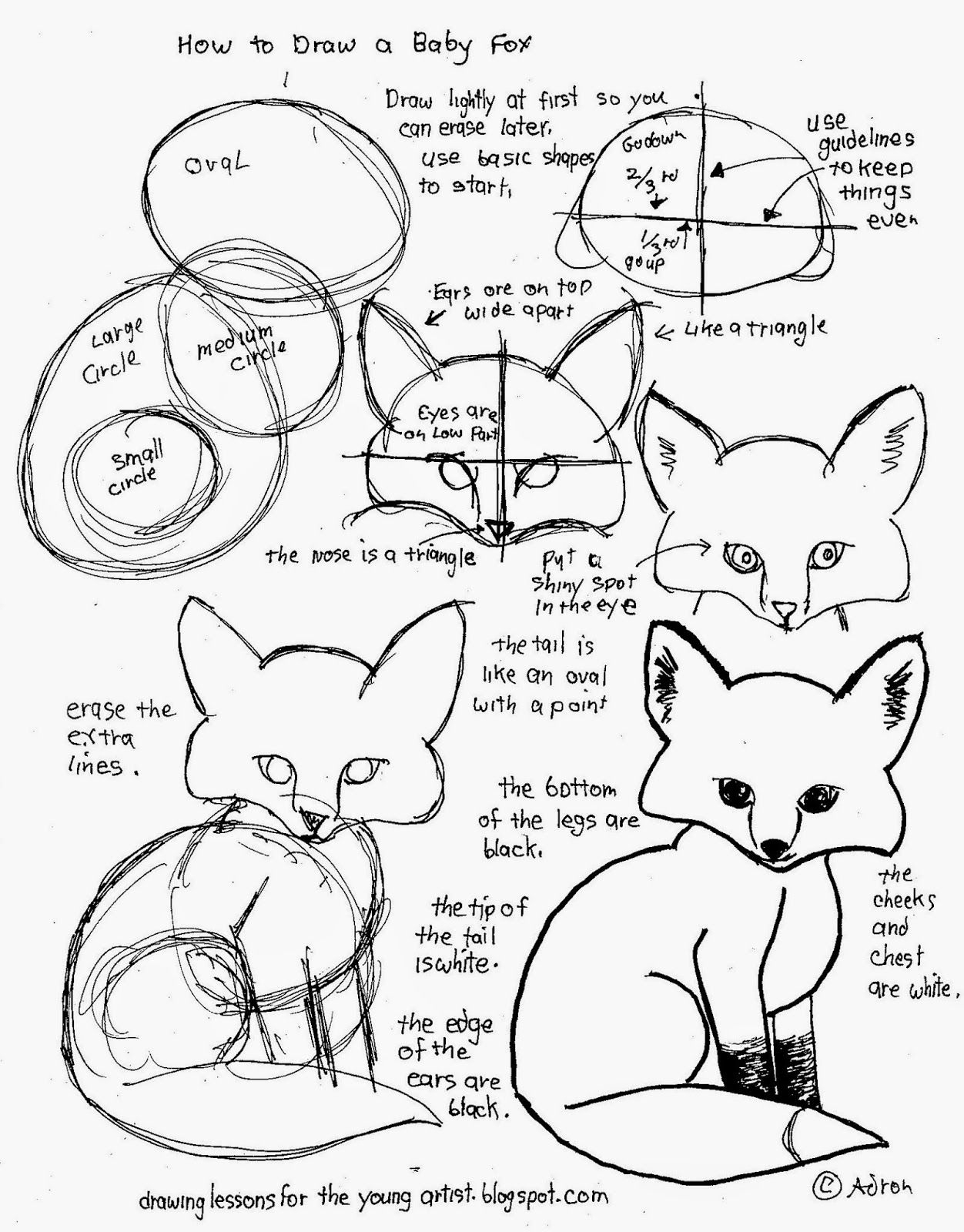 How To Draw Worksheets For The Young Artist: How To Draw A Baby Fox | Free Printable Drawing Worksheets