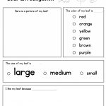 Leaf Investigation Printable Worksheet | A To Z Teacher Stuff | Printable Fall Worksheets