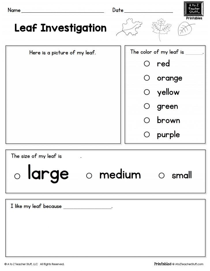 Teacher Printable Worksheets