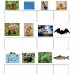 Math : Quotes Life Science Adaptations Quotesgram 1803909774 | Free Printable Worksheets Animal Adaptations