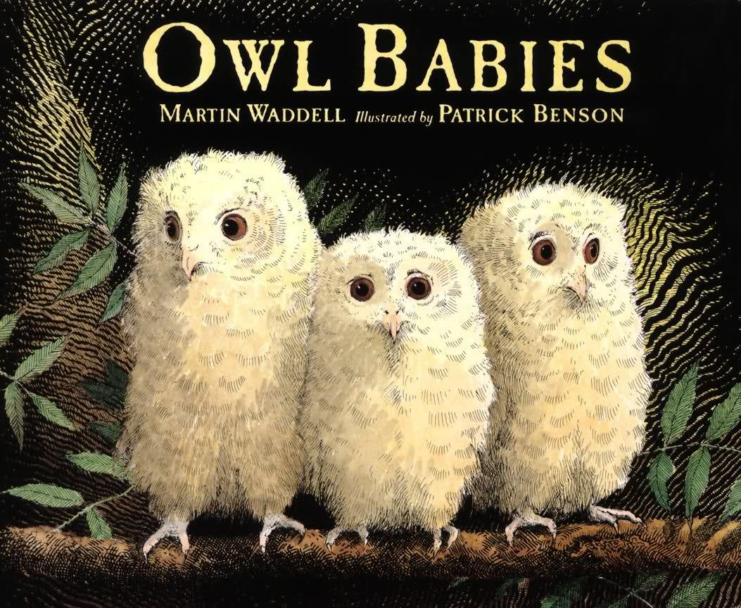 Owl Babies! Great Children's Book About Three Owlet Siblings | Owl Babies Printable Worksheets