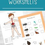 Printable Science Worksheets For Kids | Printable Science Worksheets