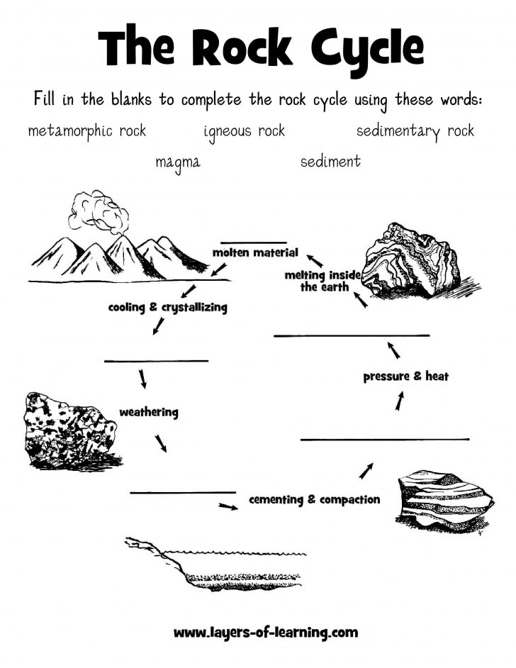 Science Worksheets For 4Th Grade Free Printable