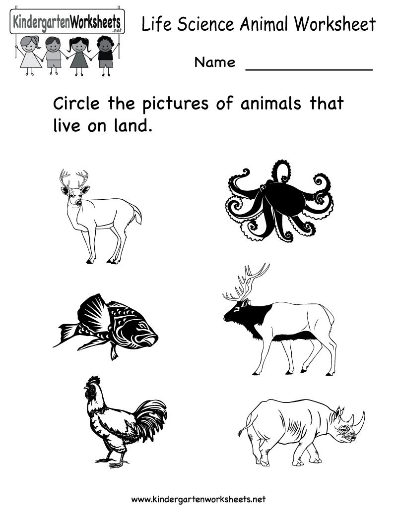 Science Printables For Kids | Life Science Animal Worksheet - Free | Kindergarten Science Worksheets Printable