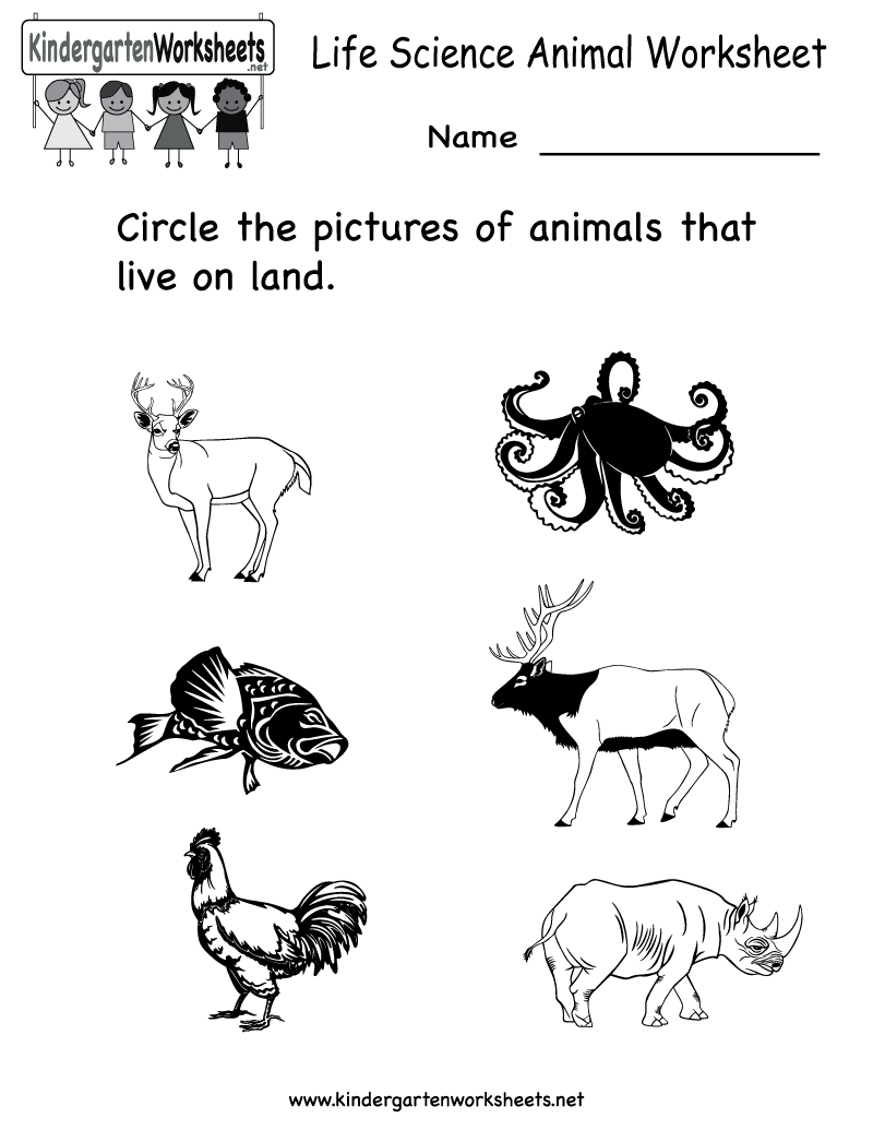 Science Printables For Kids | Life Science Animal Worksheet - Free | Science Worksheets For Kindergarten Free Printable