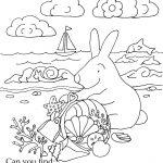 Seek And Finds | Coloring Pages | Kindergarten Worksheets, Preschool | Seek And Find Printable Worksheets
