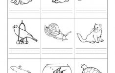 Stempelkaart | Pets Preschool Theme | Kindergarten Worksheets | Free Printable Pet Worksheets