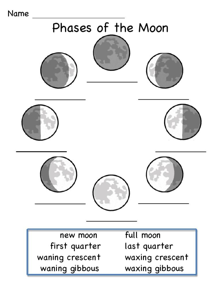This Is A Worksheet To Show The Phases Of The Moon. | Science | Moon | Phases Of The Moon Printable Worksheets