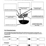 Week 15 Photosynthesis And Respiration Mrbordens Biology Rattler | Free Printable Photosynthesis Worksheets