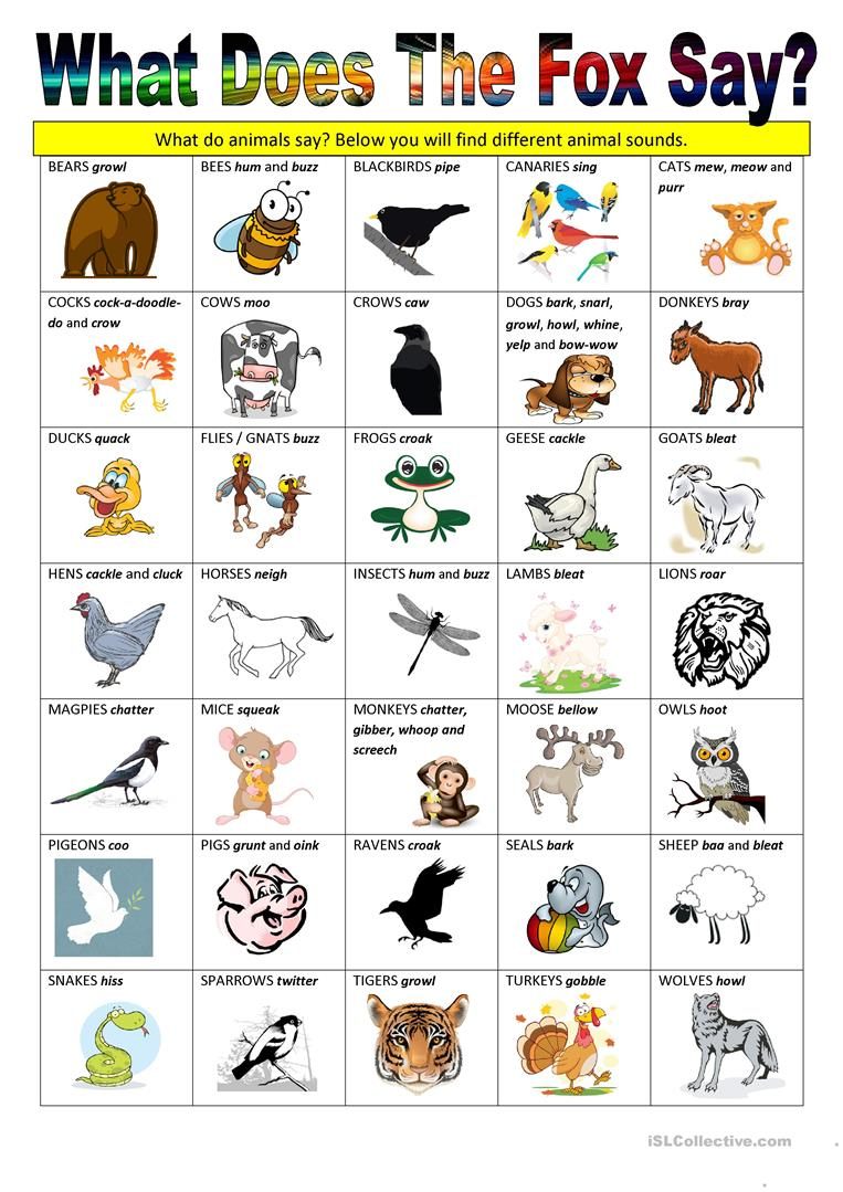 What Does The Fox Say - Animal Sounds Worksheet - Free Esl Printable   Animal Sounds Printable Worksheets