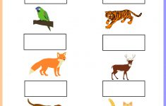 Worksheet – Tamil Animals Keywords: Free, Printable, Pdf | Free | Animal Sounds Printable Worksheets